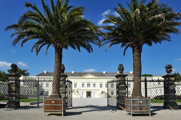 Außenansicht Eingang mit Palmen des Schloss Herrenhausen