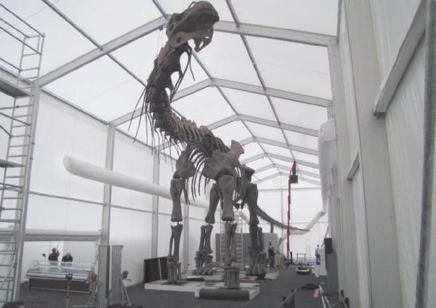 8 Meter hoher Argentinosaurus der Dinosaurierausstellung im Bonner Museum König 2009/10 einem Bau von Zelte Frank