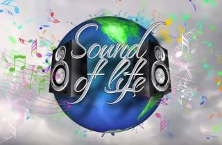 "Logo des Benefizkonzertes ""Sound of Life"""