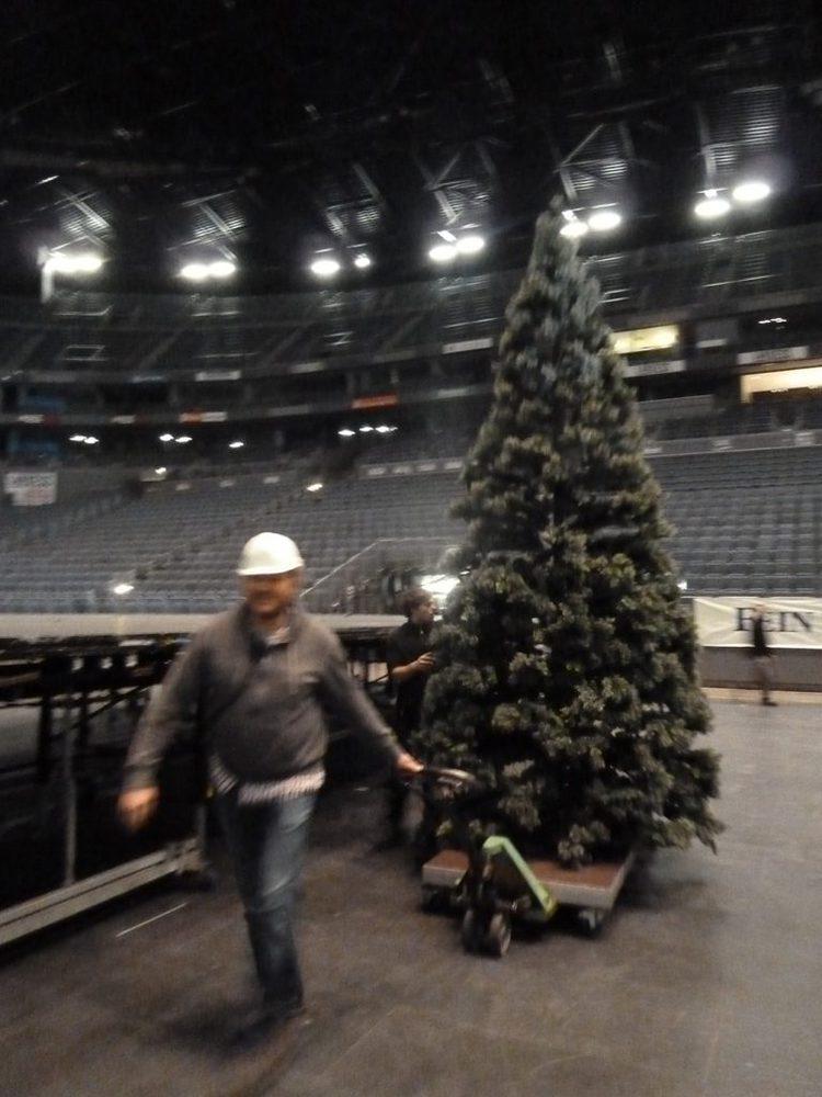 Weihnachtsbaum wird auf die Veranstaltung gebracht