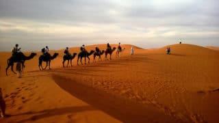 Betriebsausflug in der Wüste