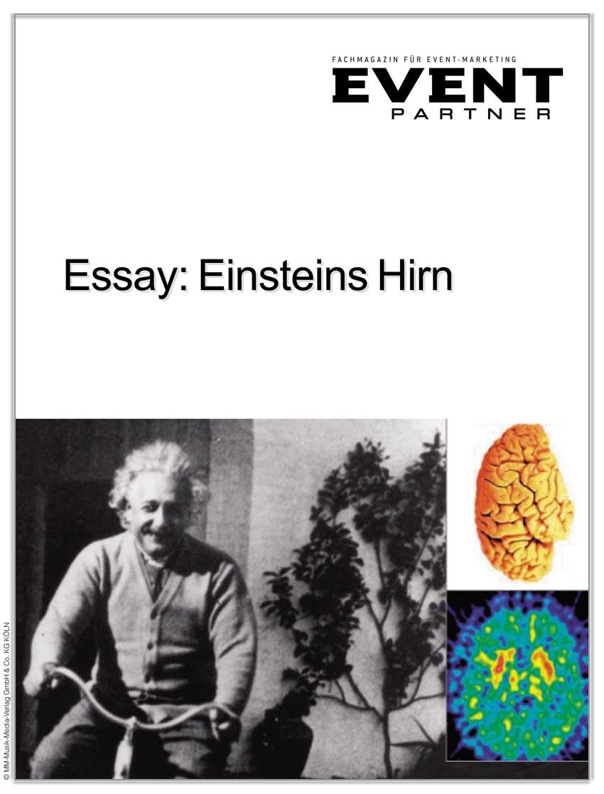 Produkt: Einsteins Hirn: Grundlagen der treffsicheren Kommunikation