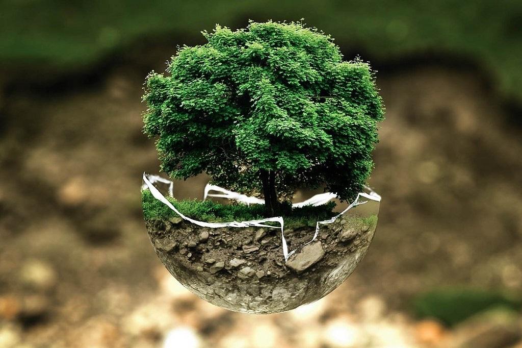 Umweltschutz_Baum_Erde