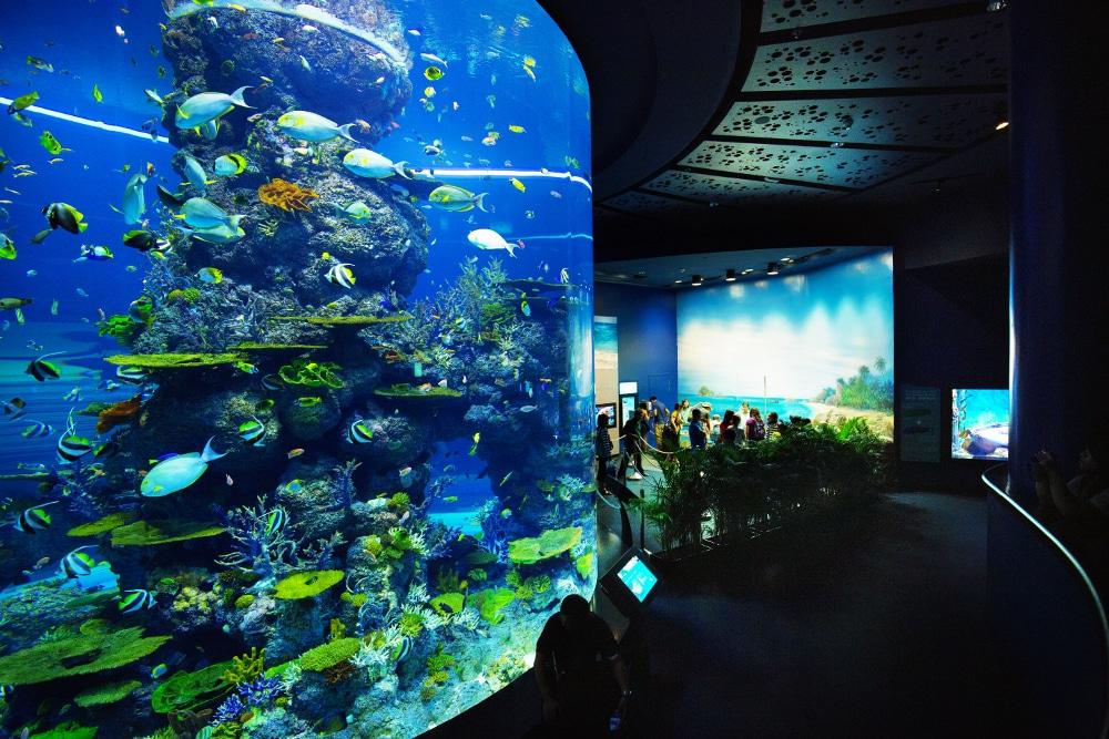 2015_Resorts-World-Sentosa_Hi-Res_18_credit-Marklin-Ang