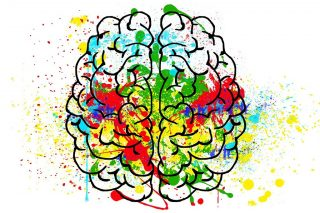 Gehirn_bunt