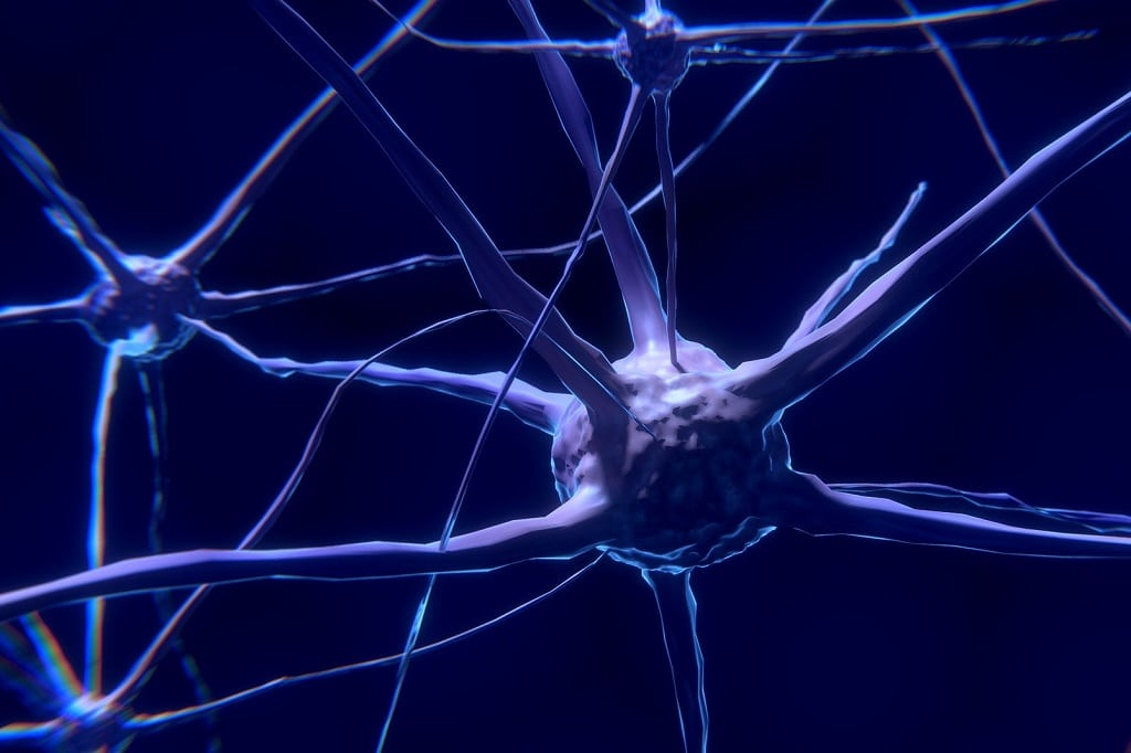 Nervenverbindungen_Neuronen